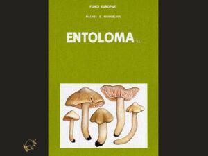 Fungi Europaei, Entoloma