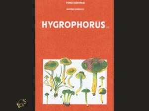 Fungi Europaei, Hygrophorus