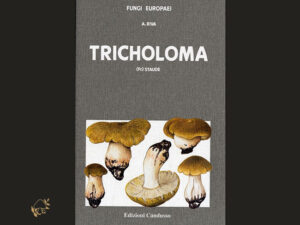 Fungi Europaei, Tricholoma