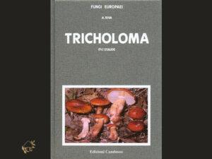 Fungi Europaei, Tricholoma supplemento